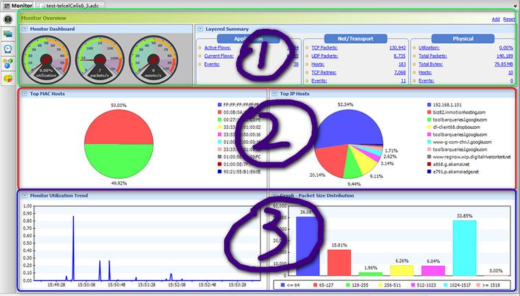 AthTek NetWalk Monitor Interface