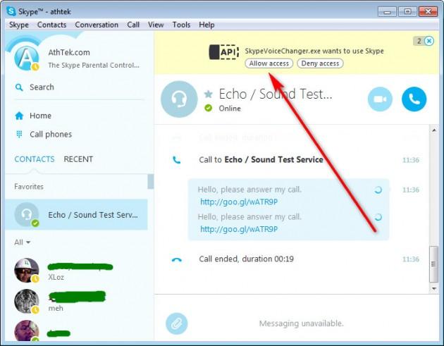 Skype Access